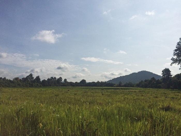 banteay-srei-temple-cambodia